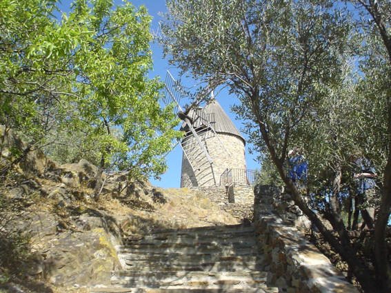 The olive windmill