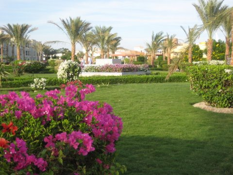 The Dana Hotel, Hurghada, where we stayed