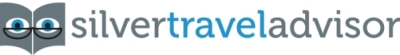 Silver travel logo